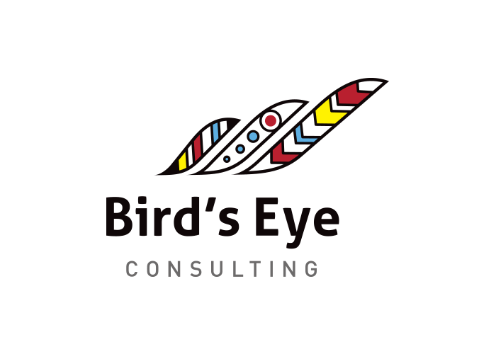 Logo- Bird's Eye Consulting