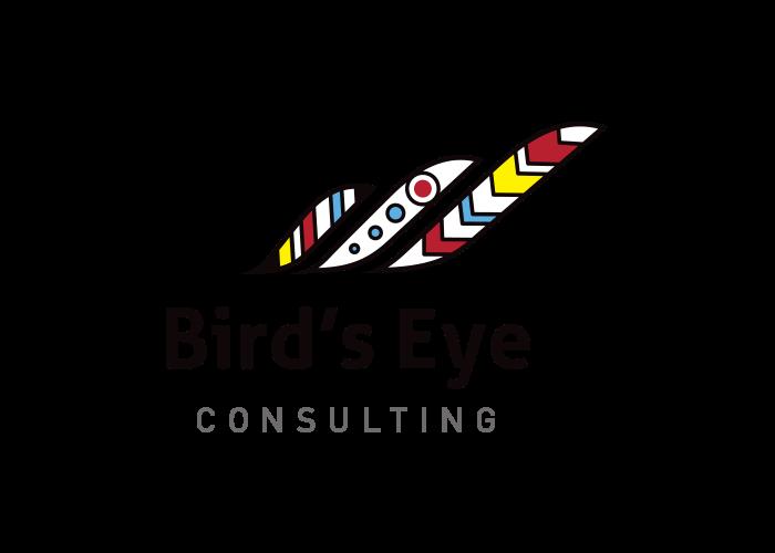 Logo- Bird's Eye Consulting