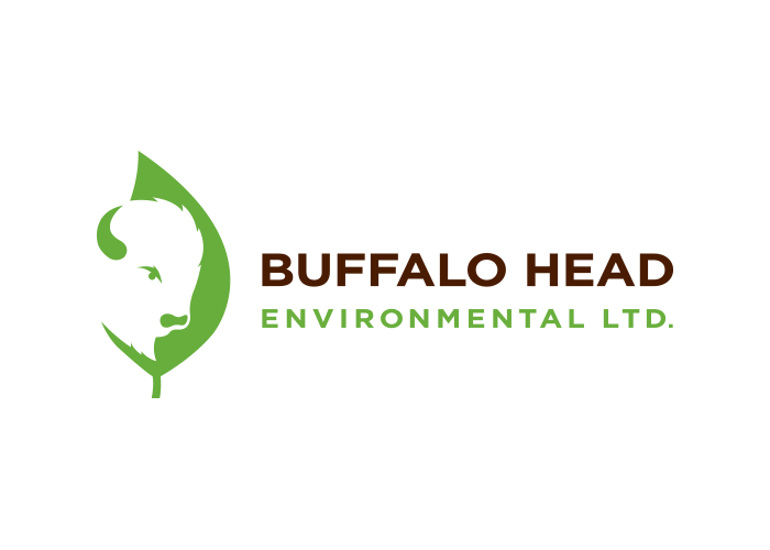 Logo - Buffalo Head Environmental